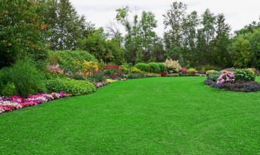 How Great Landscaping Can Improve the Image of Your Business