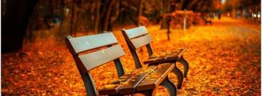 Autumn Wedding Fridge Trailer Hire